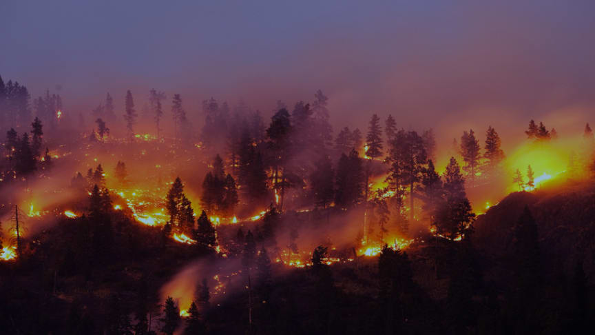 2018 års naturkatastrofer orsakade 225 miljarder dollar i ekonomisk skada