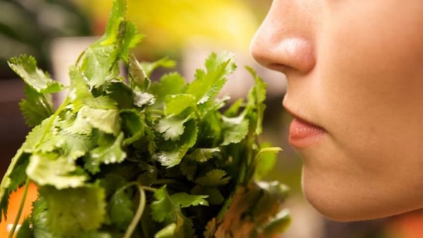 Global study: How does COVID-19 impact sense of smell and taste? (Image: Shutterstock)