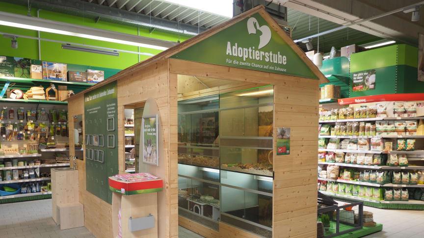 Die Adoptierstube im Fressnapf-Markt Tübingen (Foto: Fressnapf Holding SE)