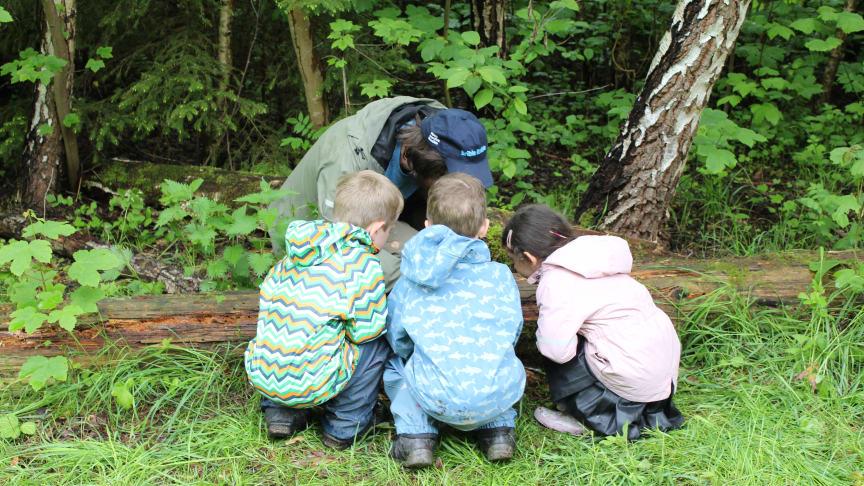 Små forskere undersøger og hjælper naturen i Rudersdal