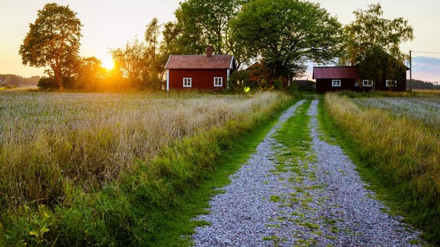Tjäna tusentals kronor på att hyra ut stugan i sommar