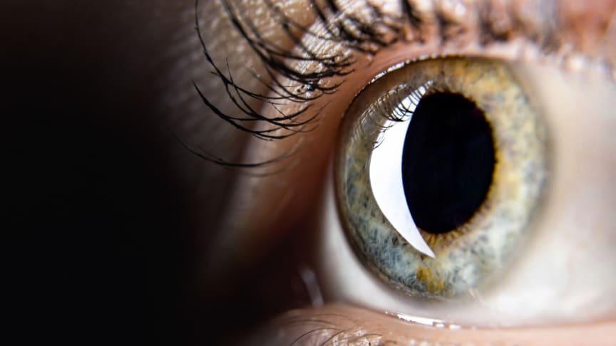 Ögonfonden stödjer forskning i världsklass kring ögat, seendet och ögats sjukdomar. Foto: Istock