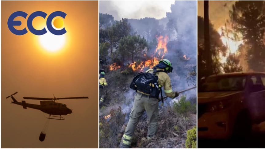 Devastation:  Wildfire in Estepona destroys over 10,000 hectares of forest land and property