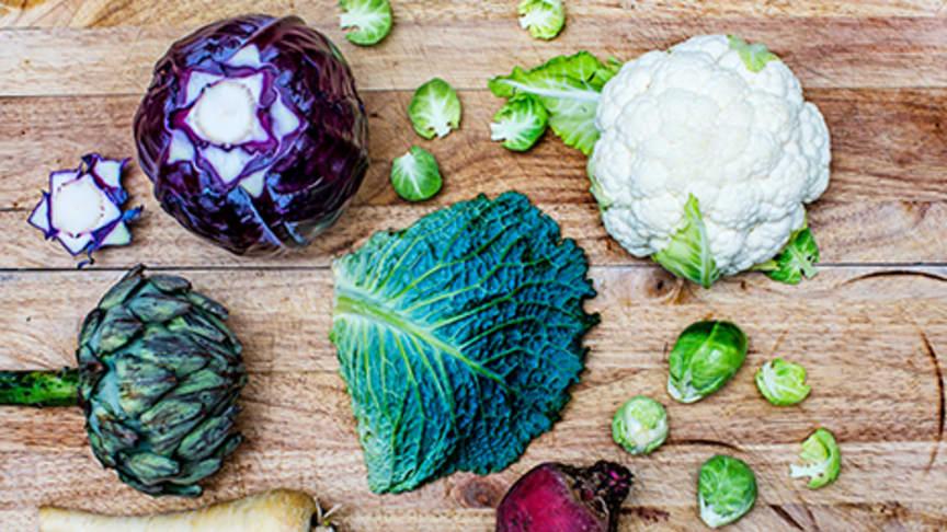 Lokala matentreprenörer sökes i Sigtuna-, Arlanda- & Uppsala-området