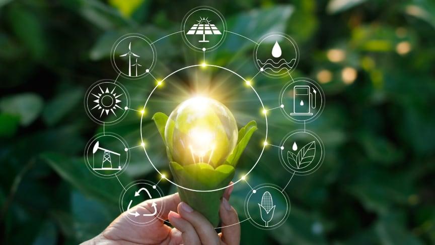 Neue Förderprojekte bewirken knapp 20 Tonnen CO2-Einsparung pro Jahr