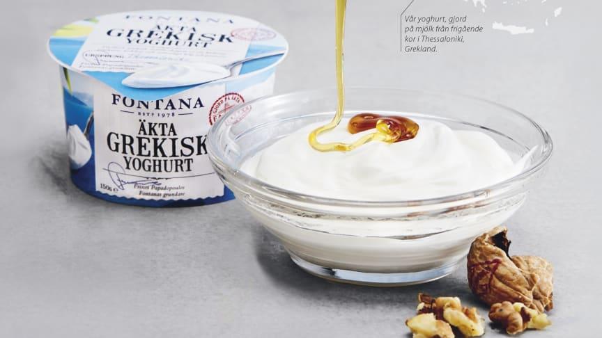 Äntligen! En Äkta Grekisk Yoghurt.