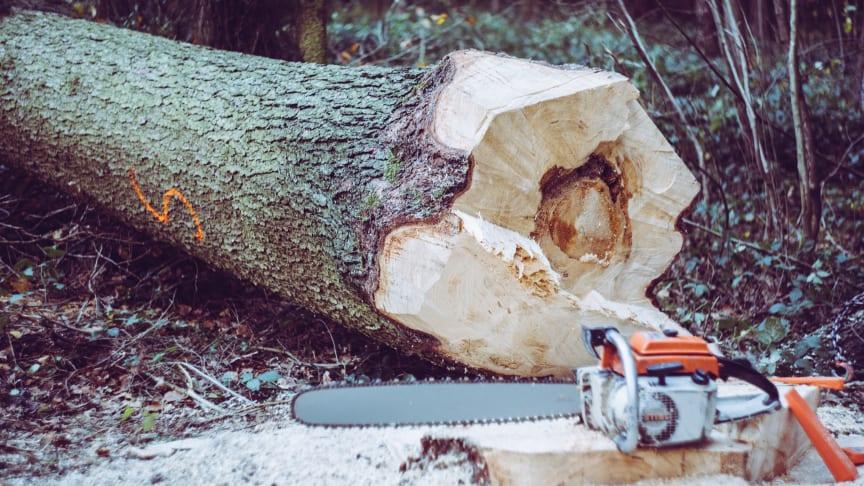 Abkati ställer ut på Mittia Skogstransport