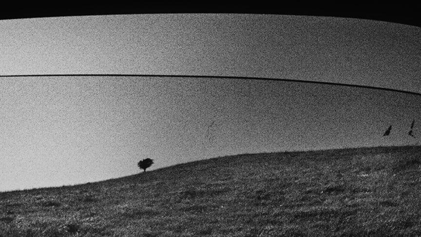Johan Strindberg tilldelas stipendiet Young Nordic Photograper of the Year