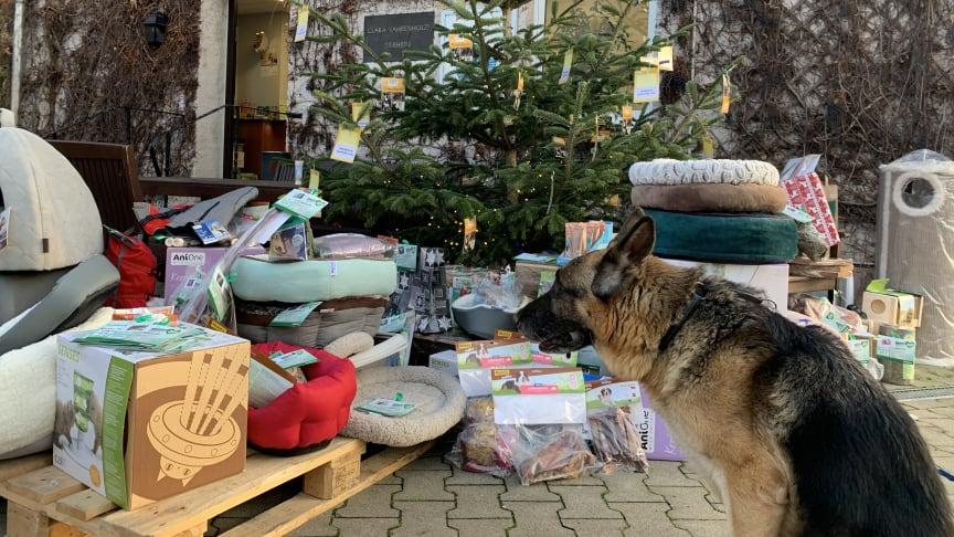 """Vorgezogene Bescherung in den Tierheimen Nettetal und Düsseldorf - dank der Kunden und der Initiative """"Tierisch engagiert"""""""
