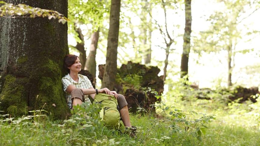 Wandern war auch zu Zeiten des Lockdowns 2020 im Weserbergland beliebt