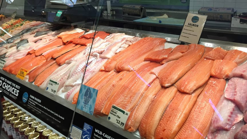 A strong quarter for Norwegian salmon exports