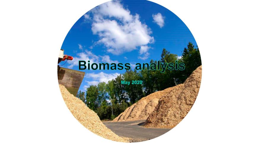 Biomass analysis has been translated into English