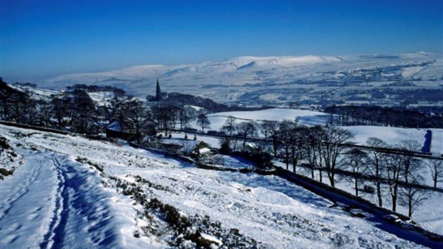 Walking in a winter wanderland!