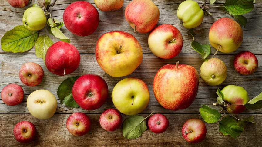 äpple i mat