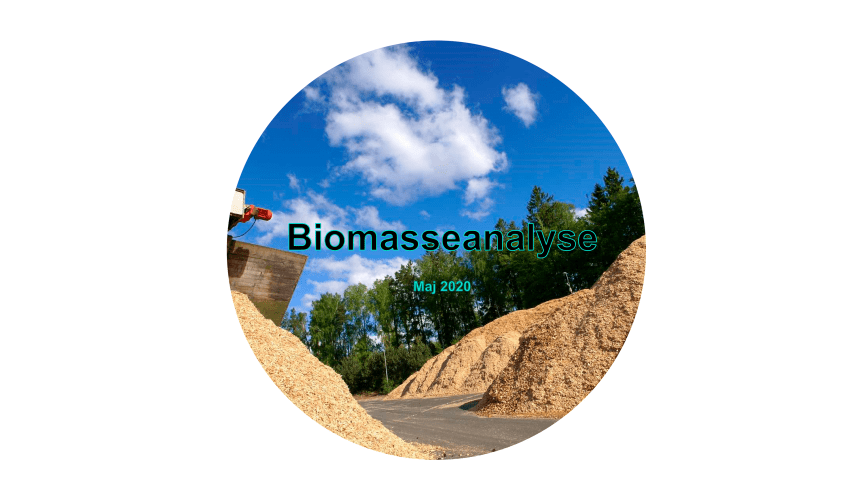 Energistyrelsen offentliggør biomasseanalyse