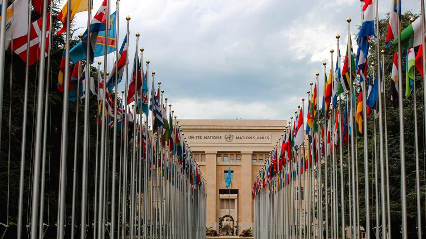 FN fyller 75 år. Vad har FN för roll i en ny vär
