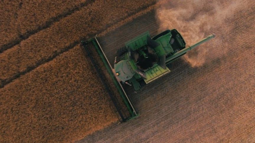 På grund af en regnefejl risikerer det danske landbrug i 2020 at udlede langt mere CO2 end tidligere antaget. Foto: Scott Goodwill (Unsplash)
