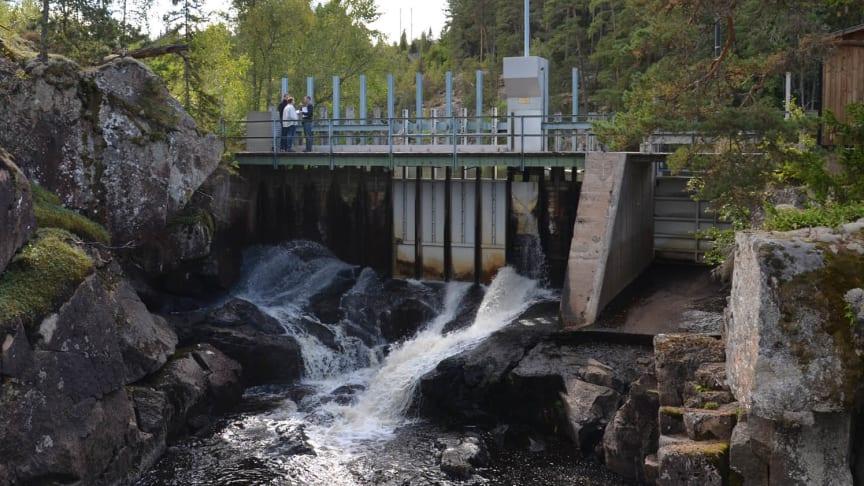 Värdefull småskalig vattenkraft för Skånska Energi