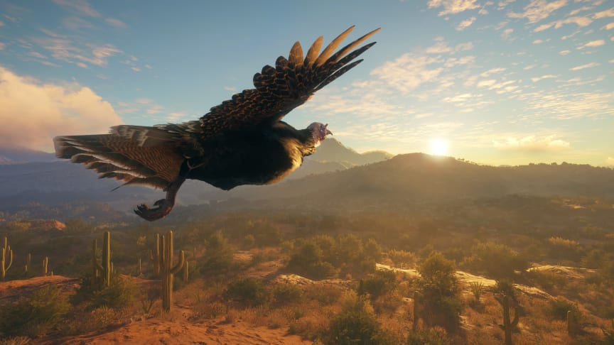 Experience Desert Hunting in theHunter: Call of the Wild - New Reserve DLC 'Rancho del Arroyo' Coming Soon