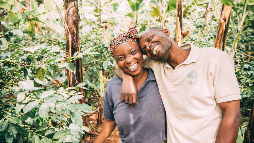 Löfbergs och International Coffee Partners förbättrade utvecklingsmöjligheterna för 49 000 småskaliga kaffebönder