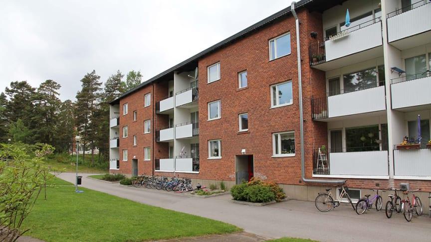 Växjöbostäder renoverar 220 lägenheter på Öster