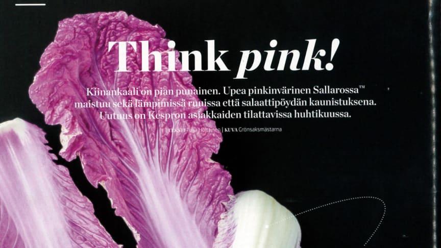 Kespro i Finland uppmärksammar nyheten Sallarossa™!