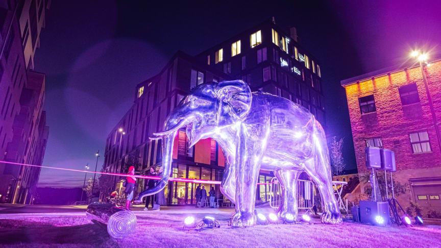 Fredag kveld ble det avduket en storslagen elefantskulptur på Elveplassen til glede for alle som er i og besøker Moss.