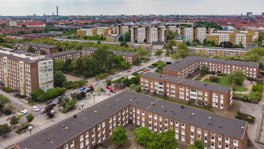 Örtagården med Törnrosens gula tegelbyggnader i bakgrunden. Foto: Joakim Lloyd Raboff