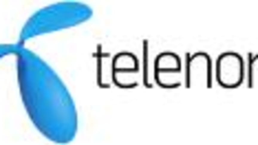 """Telenor en av initiativtagarna till """"Ditt Företag Online"""""""