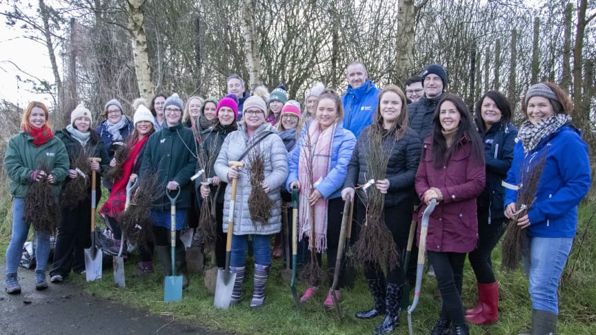 Staff from Mid & East Antrim Borough Council's Corporate Services Directorate took advantage of the dry Valentines's Day afternoon to engage in Council's MEA4Trees initiative whereby Council aims to plant 56,000 trees across the borough.