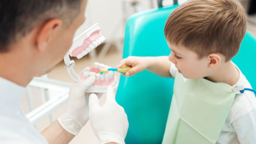 Zahngesundheit beginnt bei den ganz Kleinen