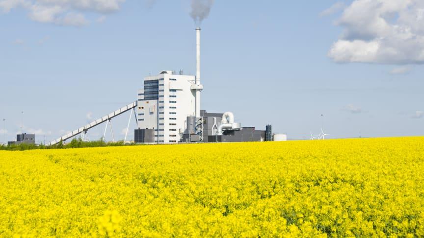 Mångmiljonsatsning med fossilfri ånga till Örtofta sockerbruk utanför Eslöv ger betydande klimatfördelar
