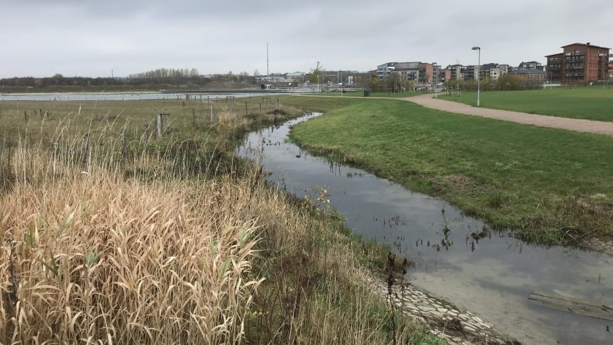 Dagvattenledning blir kanal i nytt bostadsområde