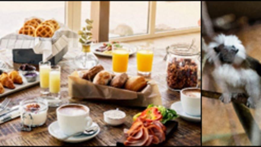 Furuvik öppnar nya weekendupplevelser i vår