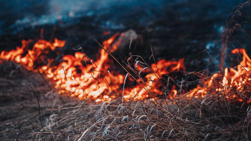Gräsbrand. Foto: Mostphotos