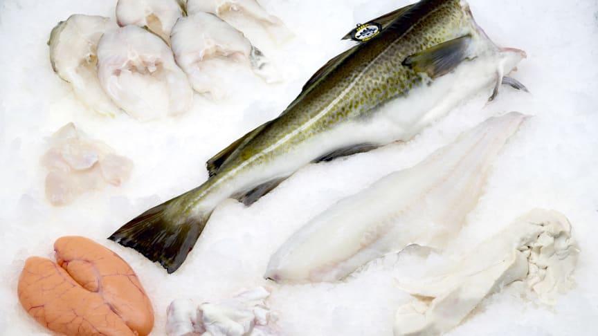 Tidenes beste januarmåned for eksport av norsk hvitfisk.