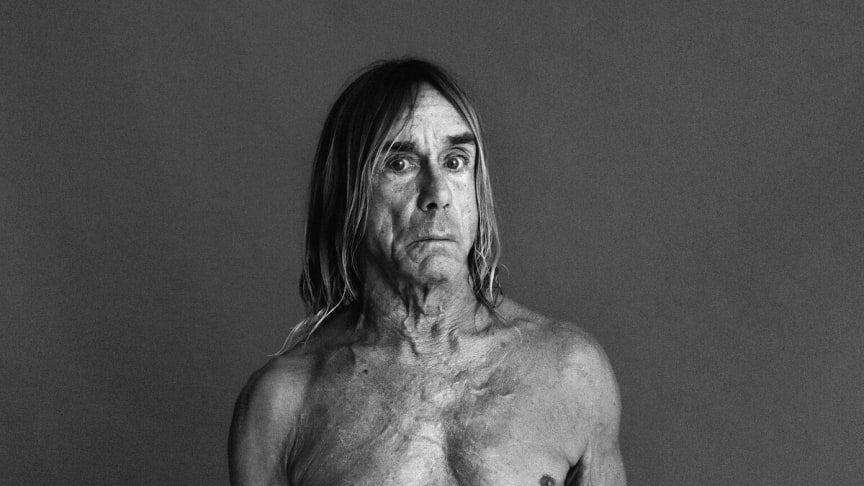 Iggy Pop and Deftones to play NorthSide