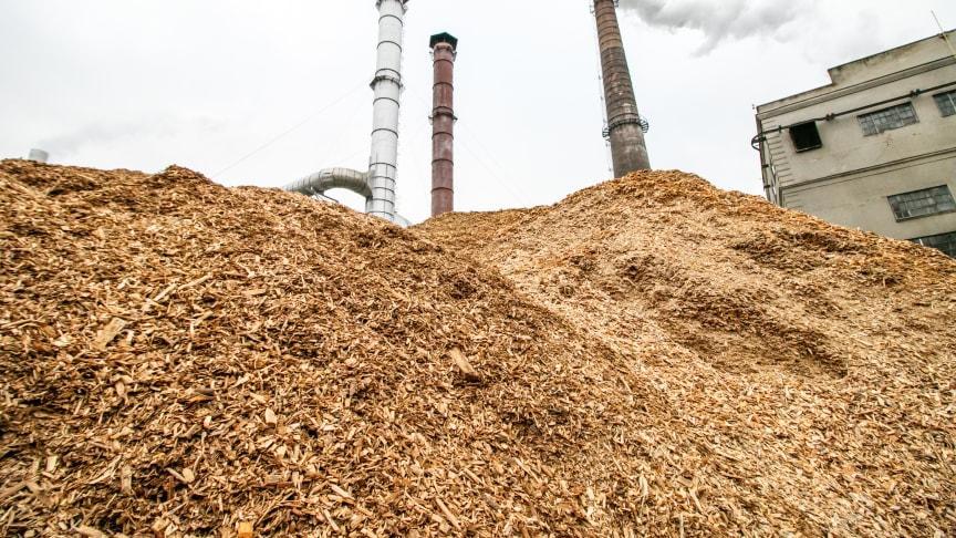 Bæredygtig er den grønne fjernvarme næppe, heller ikke for naturen i de skove, der gøres indhug i, og billig er den under ingen omstændigheder.