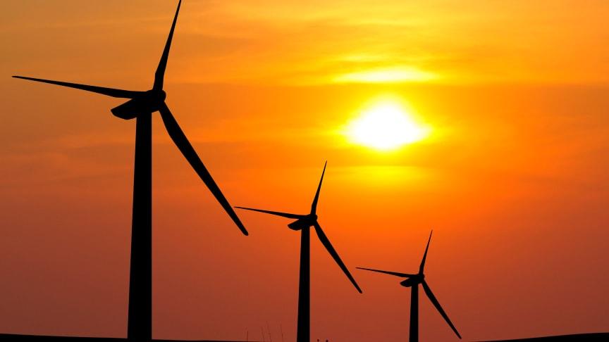 Lite vind har lett till lägre vindkraftsproduktion under sommmaren