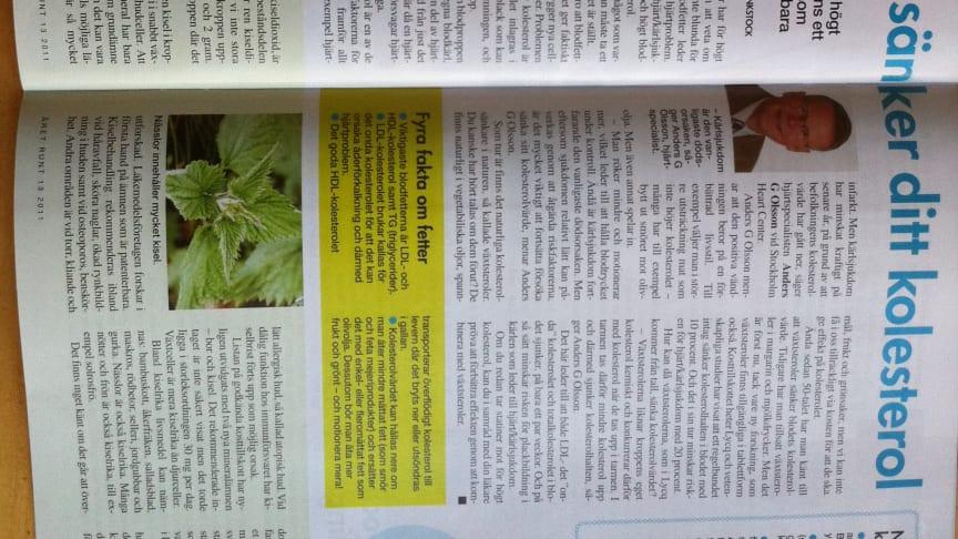 Professor Anders G Olsson intervjuas om Växtsteroler i Året  Runt
