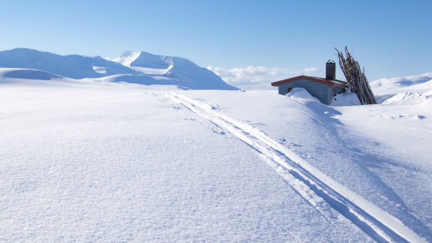 Moskanhytta - åpen bu i Rostadalen i Målselv Foto: Fredrik Jenssen