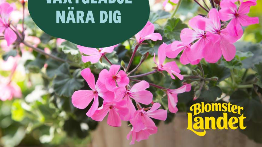 Växtglädje nära dig med Blomsterlandet.