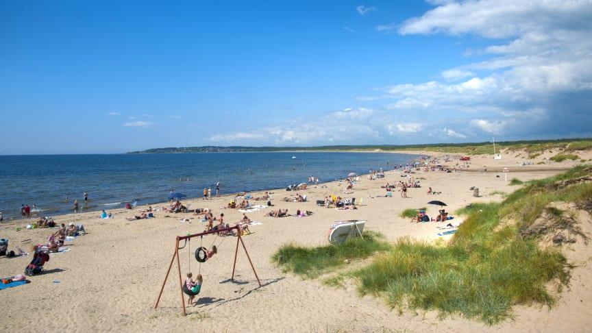 Vilshärad strand i Halmstad - en populär familjestrand.