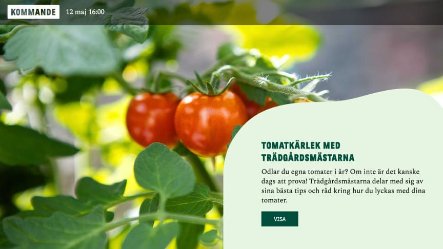 Onsdag 12 maj är det världspremiär för Blomsterlandets liveshopping.