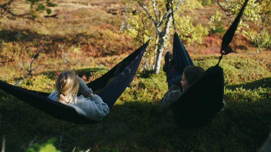 Bild tagen i närheten av Pettersfjället i Åre. Fotograf: Viktor Skogqvist
