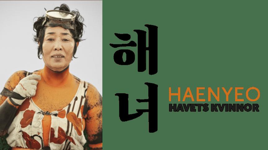 Sunok Kang, Hamo Jeju, 2014. Fotograf: Hyung S. Kim.
