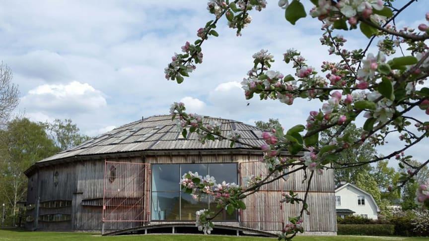 Gamla Uppsala museum överförs den 1 januari 2022 från Riksantikvarieämbetet till Region Uppsala. Foto: Gamla Uppsala museum (CCBY).