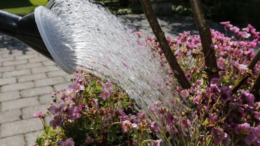 Var sparsam med det kommunala dricksvattnet i Bjuv, Helsingborg, Landskrona och Svalöv
