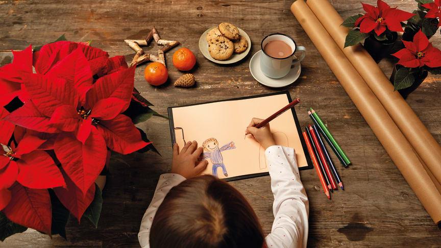 Här hittar du lite olika tips på hur du kan använda julstjärnan.