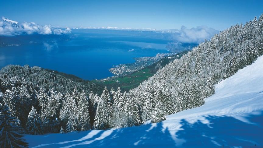 Blick auf Genfersee aus der Zahnradbahn zum Rochers-de-Naye © Schweiz Tourismus_Fotograf Stephan Engler